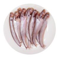 Common Sheatfish 300g