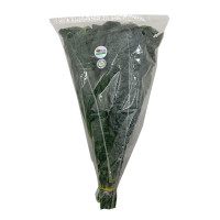 H2O Kale Organic