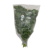 H2O Kale Curly Organic