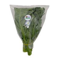 H2O Chinese Kale Organic