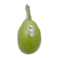H2O Gourd Organic