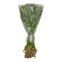 H2O Water Spinach Organic